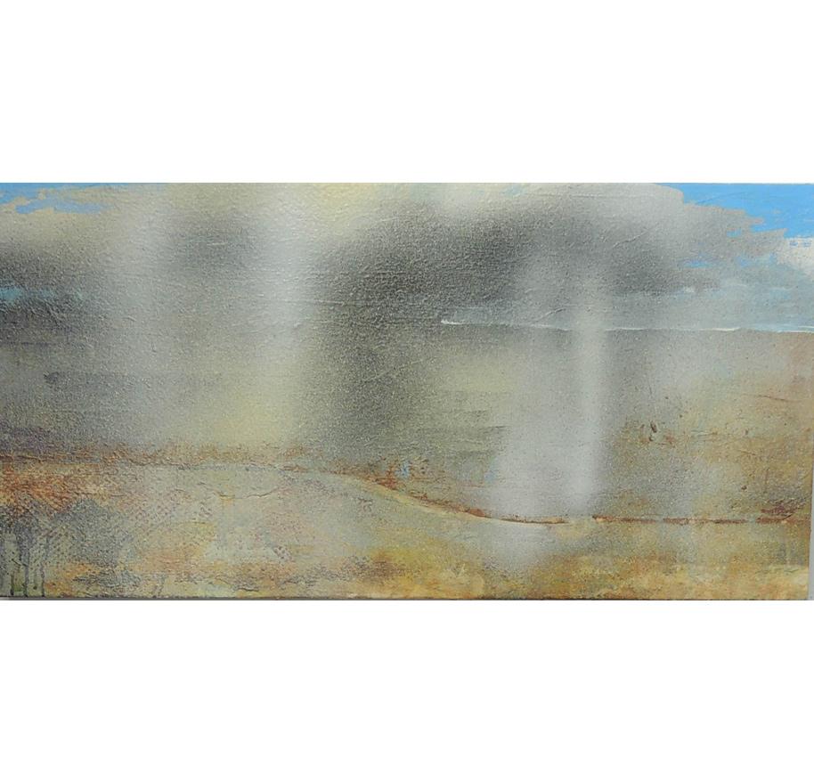 Desert Shower I,  52x103cm.  $900