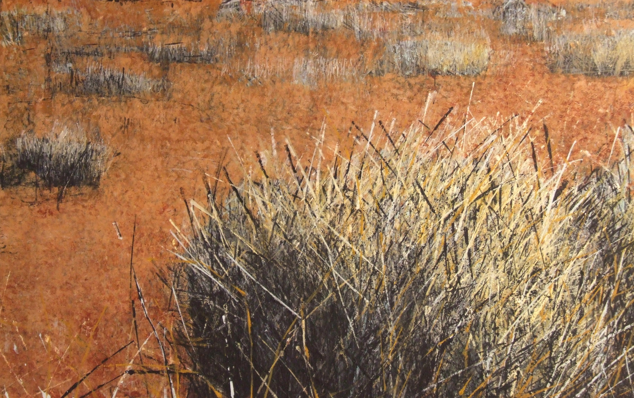 SOLD.Spinifex Simpson.122X187